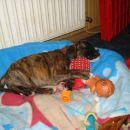 Bessy spi v svoji postelji je več prostora za igrače
