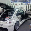 VW Beatle DLS