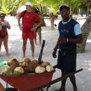Kokos ponudba
