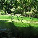 Krasna zelena reka