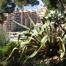Luksuni hoteli - Monte Carlo