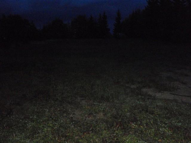 Pasja ravan zvečer, brez naglavne svetilke
