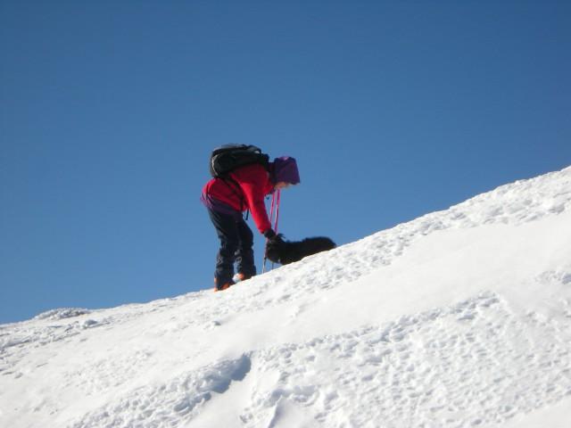Na vrhu Pece, psiček ARNI je pohvaljen za prehojeno pot