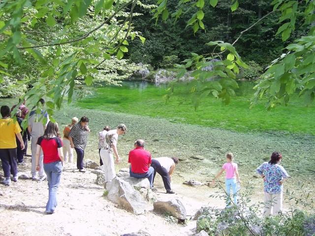 Kamniška Bistrica
