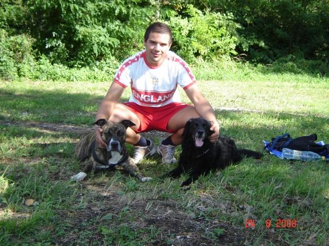Rottweiler - foto