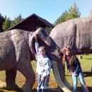 Pikini dnevi v Velenju-1.10.2005