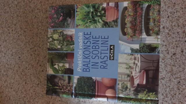Balkonske in sobne rastline