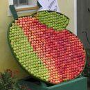 Starinske sorte jabolk in hrušk (2. del)