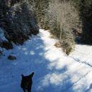 pogled zavaja - pod tanko plastjo snega je led
