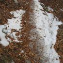 zahrbtno - led in sneg pod listjem v spodnjem delu poti