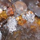 steklene želvice