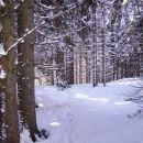 snega je vedno več