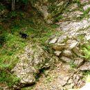 čez skalno stopnjo v gozd
