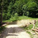 čez peščeni nasip v gozd
