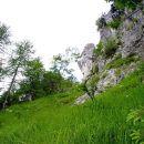 po travah levo ob skalovju