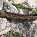 žleb pred utico