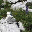 desna varianta na Kalško goro je zdajle odlično omožičena