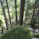 na strm grebenček