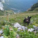 pa še pogled izpod gredine v dolino