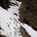 zmrznjen sneg in led do vrha