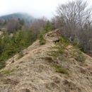po grebenu navzgor in desno proti Osredku (oznake spet pogostejše)