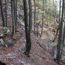 preči strmo gozdnato grapo