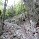 po Dolskem grabnu navzgor dokler se pot povsem ne približa steni