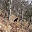 steza zdaj nekaj časa vodi visoko nad dolino Črne