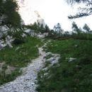 strmina ne popusti niti nad gozdno mejo