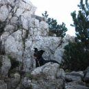 prvo skalovje na poti - steza se vzpenja na greben