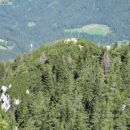 nazaj grede pa še tjale - predvrh Velikega vrha, ki ga označena pot obide