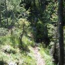 od tam pa levo strmo po grebenu na vrh