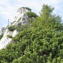 par metrov po grebenu naravnost navzgor nato desno pod vrhom grebena po prehodih spust v t