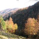 dolina Korošice v popoldanskem soncu