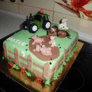 Torta kmetija