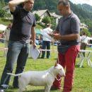 PIGGY - CAC HRUŠICA 2007