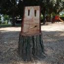 Obrezovanje dreves na obali 041 615 222