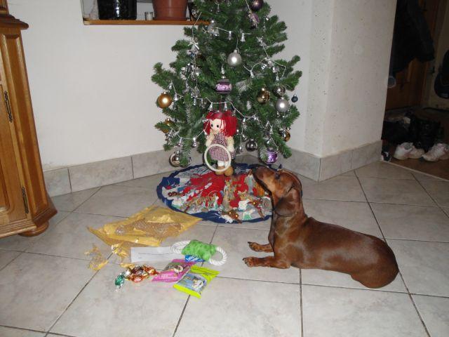 Pesjanarski božiček 2012 - foto