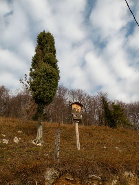 15 Čelovnik, Kincl - foto
