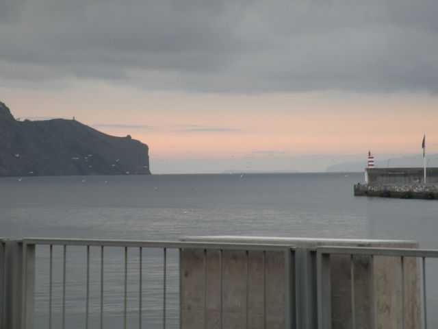 16 Madeira pico arreiro - foto