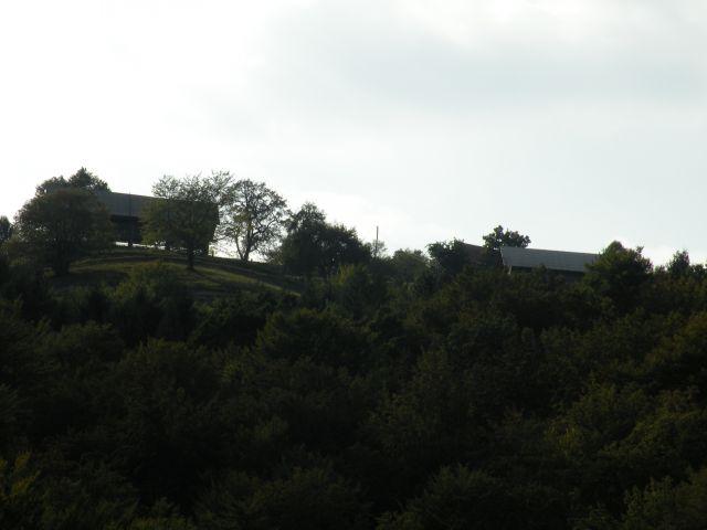 16 V.k.Zeleno okno - foto