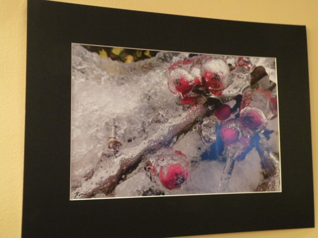 17 Judith Zgonec razstava fotografij - foto