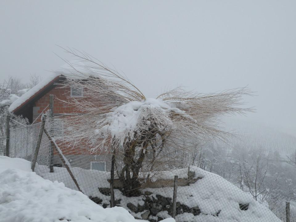 18 Od Dolinška do Brezovice - foto povečava