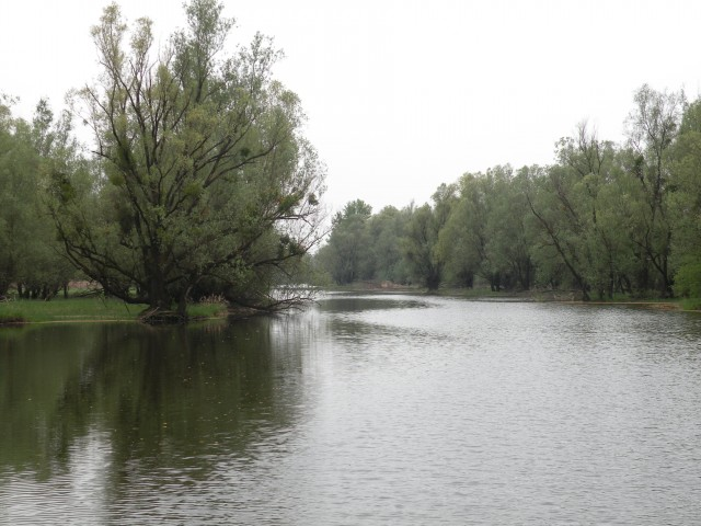 U3 Slavonija Kopački rit - foto