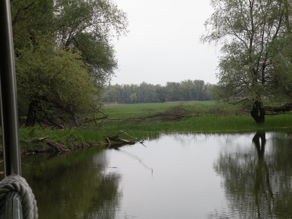 U3 Slavonija Kopački rit - foto povečava