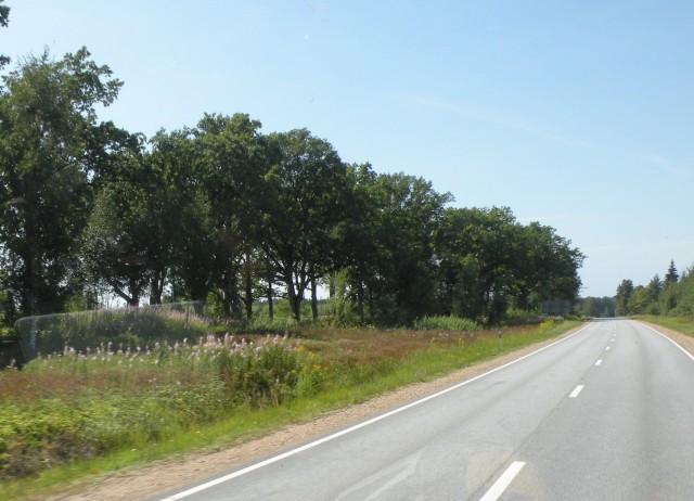 19 Balt.3 NP Gauja - Sigualda in Turaida - foto