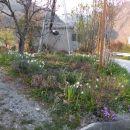 20 moj vrt