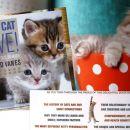 Mačje branje d - KITTY CYT LOVE