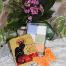12 Mini mila Cat Noir v kovinski škatlici. IC = 4 eur
