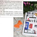 18 g HIŠA, Ivana Djilas  IC = 4 eur